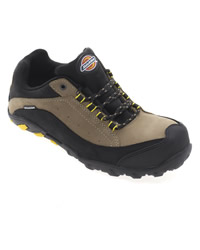 Dickies Faxon Trainer